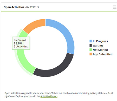 Open Activities by Status