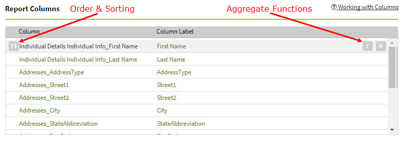 Screenshot showing the components of a custom report's columns