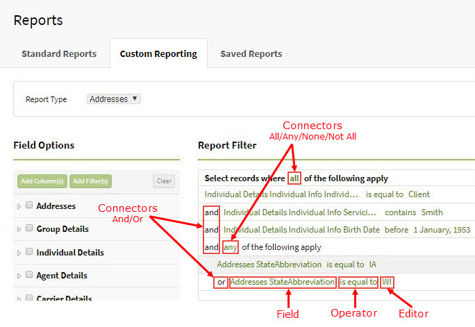 Screenshot showing the components of a custom report's filters