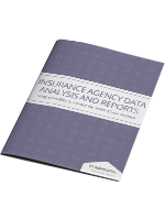 [White Paper] Insurance Agency Data Analysis and Reports